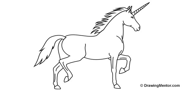 Images of a unicorn to draw